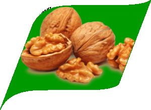 Грецкий орех (10 штук)